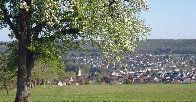 Ortsansicht-Frühling