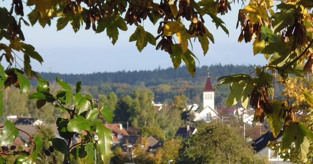 Dettenhausen Herbstmotiv 2013-10