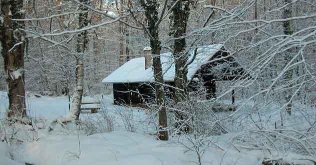 Winterlandschaft Hütte Eisenbachhain